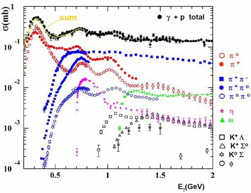 Hadron Spectroscopy